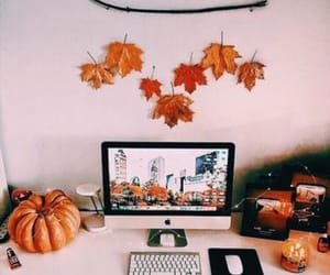 autumn, decor, and fall image