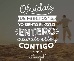 frases, mariposas, and zoo image
