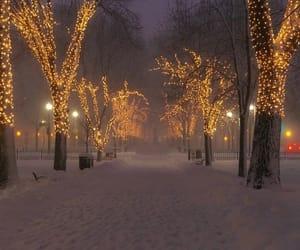 autumn, dark, and snow image