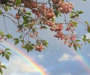 rainbow, flowers, and sky image