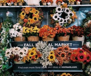 flowers, aesthetic, and autumn image