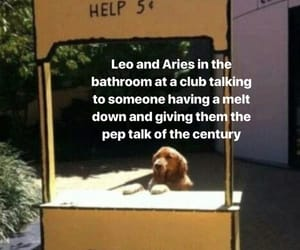 aries, Leo, and signs image