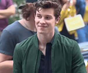 gif, shawn mendes, and gifs image