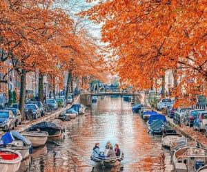 amsterdam, beautiful, and nature image