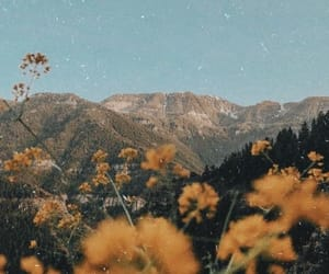 wallpaper, flowers, and mountains image