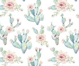 botanical, cactus, and colors image
