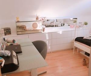 bedroom, desk, and hamster image