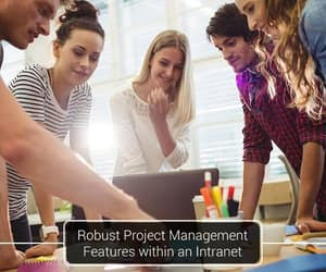 office 365, intranet-software, and intranet-solution image