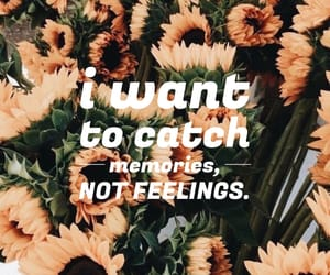 background, feeling, and flowers image