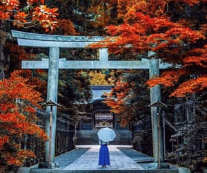 fall, travel, and japan image