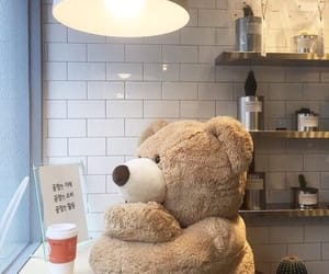 bear, aesthetic, and brown image