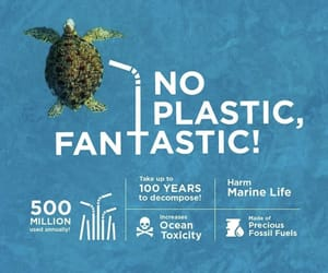 oceans, plastic, and save the world image