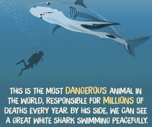 humans, oceans, and save the world image