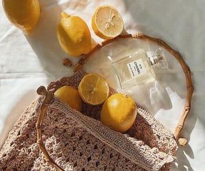 lemon, bag, and yellow image