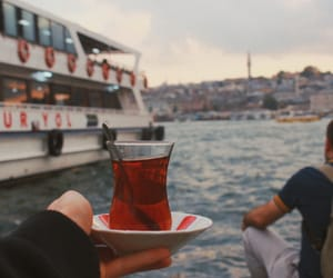 grainy, gulls, and istanbul image