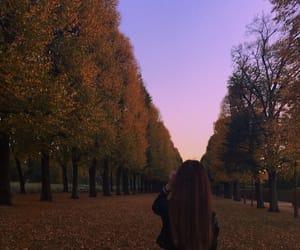 color, fall, and fashion image