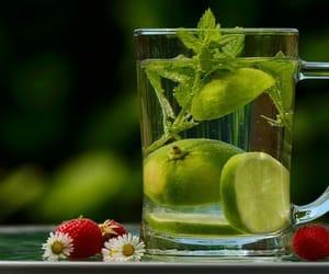 agua, comida, and food image