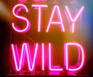 cool, neon lights, and wild image
