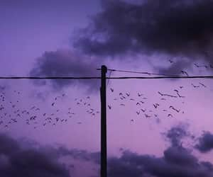 clouds, peaceful, and purple image