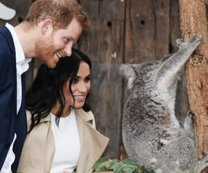 beautiful, meghan markle, and the british monarchy image