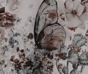 header and butterfly image