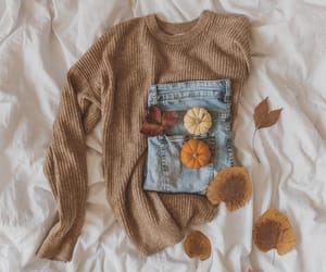 autumn, basic, and brown image