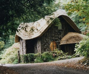 house, cottage, and forest image