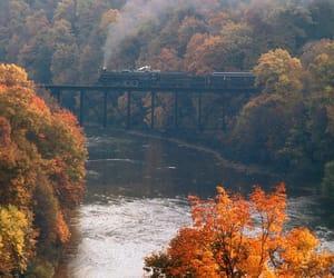 autumn, nature, and train image