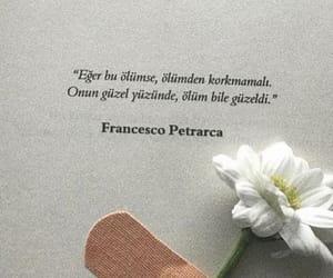francesco petrarca, alıntı, and türkçe sözler image