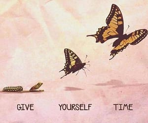 time, butterfly, and life image