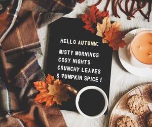 autumn, candles, and orange image