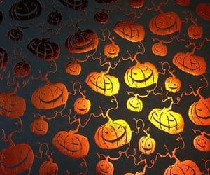pumpkin and wallpaper image