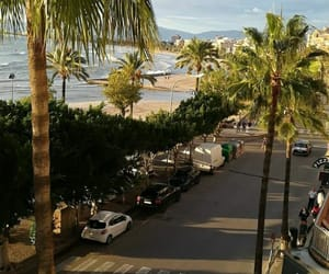 mallorca, palm trees, and spain image