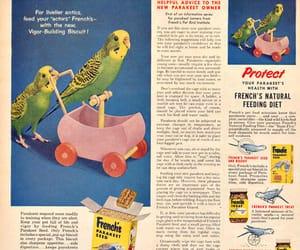 1950s, 1956, and box image