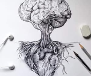 drawing, heart, and brain image
