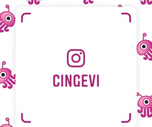 follow, mexican, and mexigers image