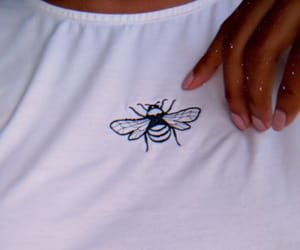 bee, fashion, and style image