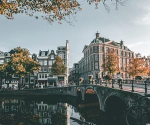 amsterdam, netherlands, and autumn image