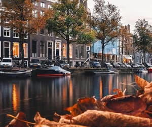autumn, amsterdam, and city image