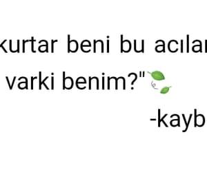 turkce, sevmek, and sözler image