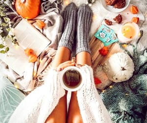 autumn, blanket, and books image