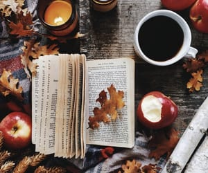 autumn, apples, and book image