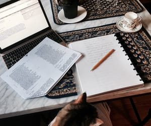article, essay, and literary image