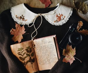 autumn, book, and photography image