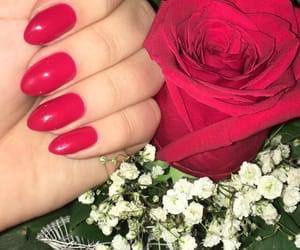 flowers, nails, and red image