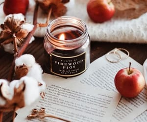 autumn, candle, and apple image