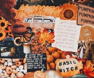 autumn, fall, and orange image