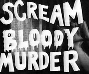 bloody, murder, and scream image