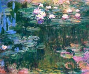 fondos and flor de loto image