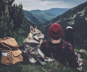 nature, dog, and boy image